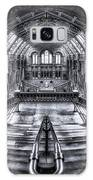 Harry Potter Meets Escher And Darwin. Galaxy S8 Case