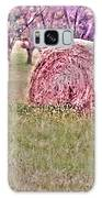 Hay Stack Galaxy S8 Case