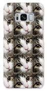 Here Kitty Kitty Close Up 25 Galaxy S8 Case