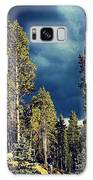 Hike In The Woods Galaxy S8 Case