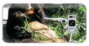 In Need Of More Sleep. Er Shun Giant Panda Series. Toronto Zoo Galaxy S8 Case