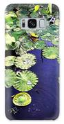 Lilly Pad Galaxy S8 Case