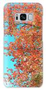 Maple Tree In Autumn Galaxy S8 Case
