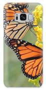 Monarch Gathering Galaxy S8 Case