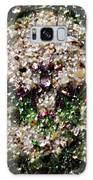 Nature's Bond Galaxy S8 Case