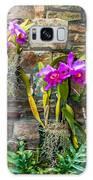Purple Orchids With Cultured Stone Background Galaxy Case by Alex Grichenko