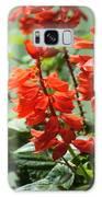 Red Flower Galaxy S8 Case