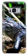 Resting Alligator  Galaxy S8 Case