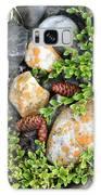 Rocks And Lichen Galaxy S8 Case