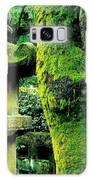 Secret Garden Galaxy S8 Case