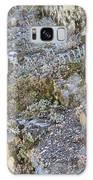 Siskiyou Sedums Galaxy S8 Case