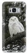 Snowy Owl Galaxy S8 Case