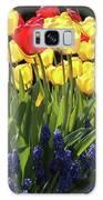 Spring Garden Sunshine Square Galaxy S8 Case