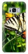 Sunbathing Galaxy S8 Case