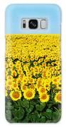 Sunflower Field, North Dakota, Usa Galaxy S8 Case