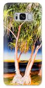 Trees At Night Galaxy S8 Case