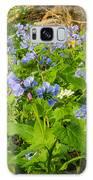 Virginia Bluebells Galaxy S8 Case