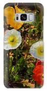 Wild Poppies Galaxy S8 Case