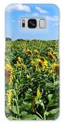 Windblown Sunflowers Galaxy S8 Case