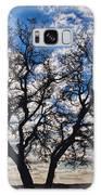 Winter Blue Skys Galaxy S8 Case