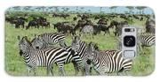 Zebra And Wildebeest Grazing Masai Mara Galaxy S8 Case