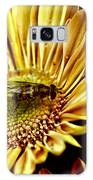 Bee Galaxy S8 Case