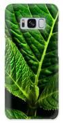 Emerging Hydrangea Leaf Galaxy Case by  Onyonet  Photo Studios