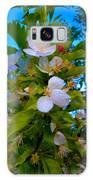 White Beauty Galaxy S8 Case