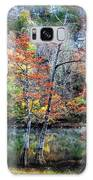 Autumn At Beaver's Bend Galaxy S8 Case