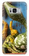 Autumn Gourds Galaxy S8 Case by Garry Gay