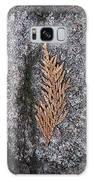 Cedar On Granite Galaxy S8 Case