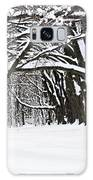 Winter Park With Snow Covered Trees Galaxy S8 Case by Elena Elisseeva