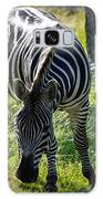 Zebra At Close Range Galaxy S8 Case