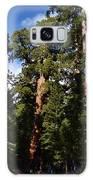 Yosemite Sequia Galaxy S8 Case
