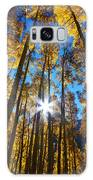 Autumn Aspens Galaxy Case by Kate Avery