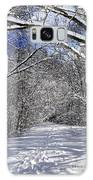 Path In Winter Forest Galaxy Case