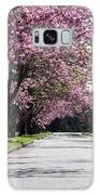 Pink Blooming Trees Galaxy S8 Case