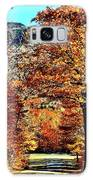 The Richness Of Autumn Treasures Galaxy S8 Case