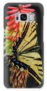 A Tiger On A Poker Galaxy S8 Case