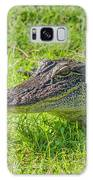 Alligator Up Close  Galaxy S8 Case