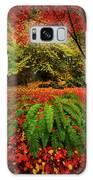 Arboretum Primary Colors Galaxy S8 Case