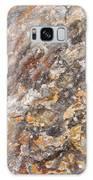 Arizona Petrified Wood Macro Galaxy Case by Kyle Hanson