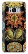Ascidiae Galaxy S8 Case