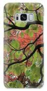 Autumn 7 Galaxy S8 Case