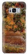 Autumn Colors 37 Galaxy S8 Case