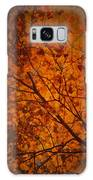 Autumn Colours Galaxy S8 Case