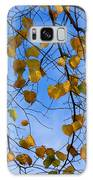 Autumn Leaves Galaxy S8 Case