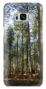 Autumn Tranquil Forest Galaxy S8 Case