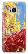 Autumn Trees Red Yellow Fall Tree Blue Sky Landsape Galaxy S8 Case