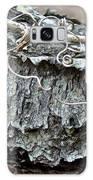 Bark - Lichen - Cat Brier Tendrils Galaxy S8 Case